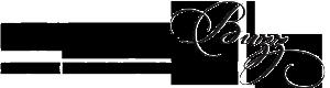 BallantyneBuzzHeader_v5_Logo-copy
